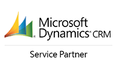 microsoft dynamic partner