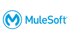 fiti partner mulesoft